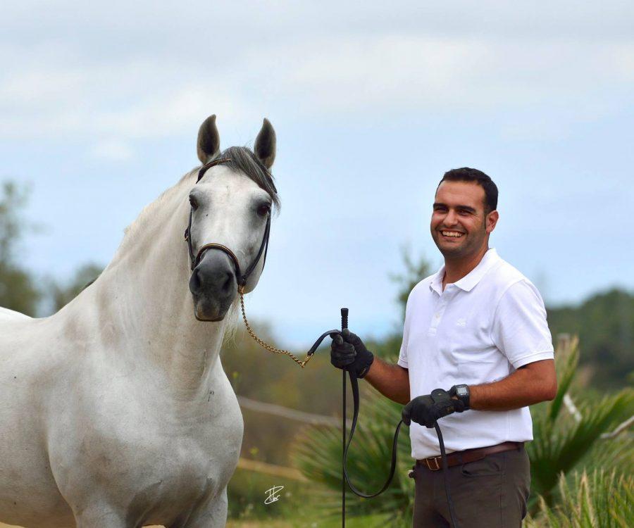 equuservice con caballo