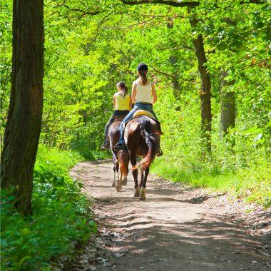 paseo_caballo